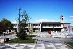 Autarquia de Santo Tirso garante transporte escolar a três mil alunos
