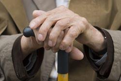 Paranhos lança projeto de teleassistência para apoiar idosos isolados