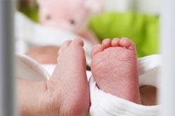 2012 é o ano com menos bebés