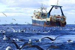 Portugal assegura aumento de 2,5% das quotas de pesca