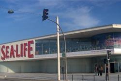 SEA LIFE Porto realiza simulacro de incêndio e de salvamento de mergulhador