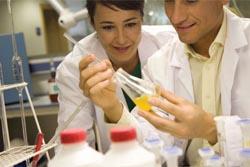 Bolsa de investigação para jovens médicos