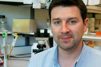 Matosinhense ganha bolsa europeia para estudar cancro