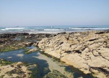 Investigadores da U.Porto criam sistema para monitorizar os oceanos
