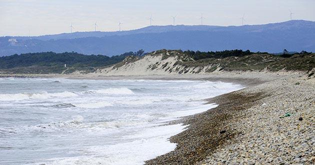 CIIMAR propõe novo método de produzir energia a partir das ondas