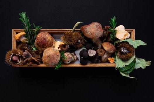 O Outono servido à mesa no Astória