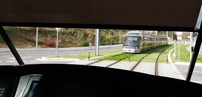 Metro do Porto vai compensar impacto da Linha Amarela com a plantação de 755 sobreiros