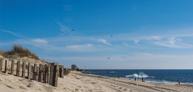 Matosinhos e Gaia com praias Zero Poluição