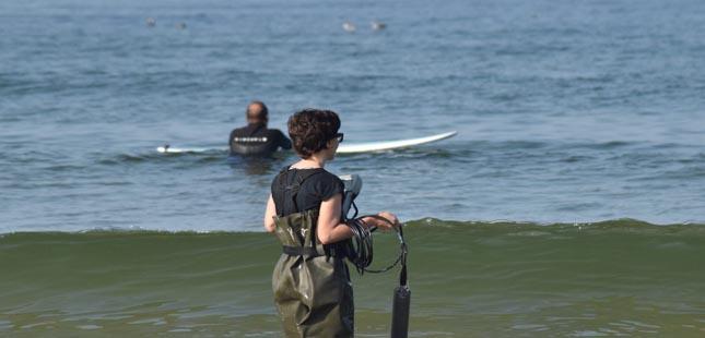 Investigadores do ICBAS detetam bactérias patogénicas em praias do Norte