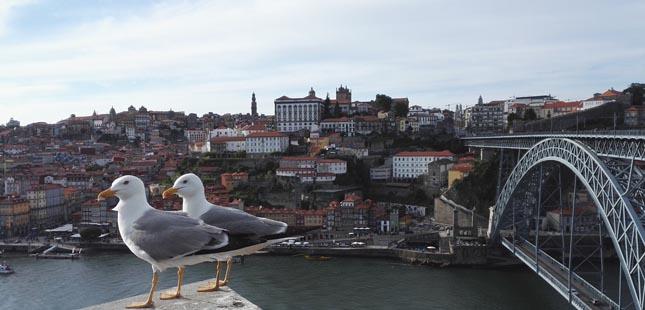 Descubra como visitar o Porto sem sair de casa