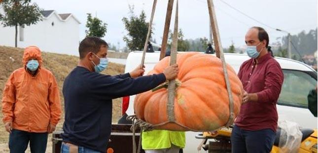 III concurso de hortícolas gigantes de Paredes regressa em setembro