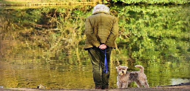 Porto coloca cães a ajudar idosos a regressar à vida ativa