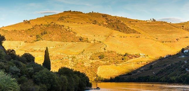 Já subiu aos pontos mais altos de Portugal?